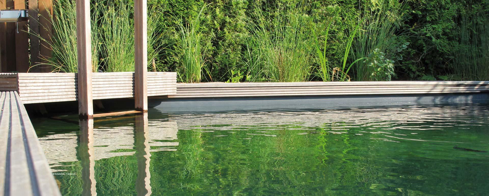 Von der Idee zum eigenen Teich